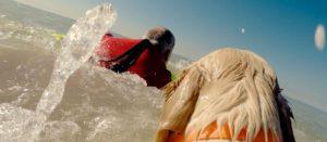 Video Promo Reportage UCSN unità cinofila salvataggio nautico